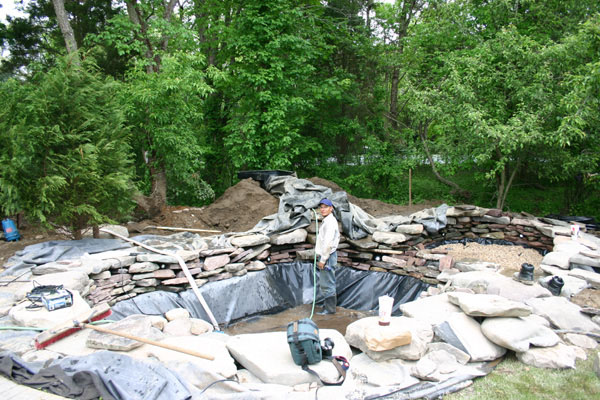 Kent koi ponds kent connecticut specializing in koi for Fish pond construction and design