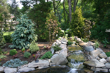 Kent Koi Ponds Kent Connecticut Specializing In Koi